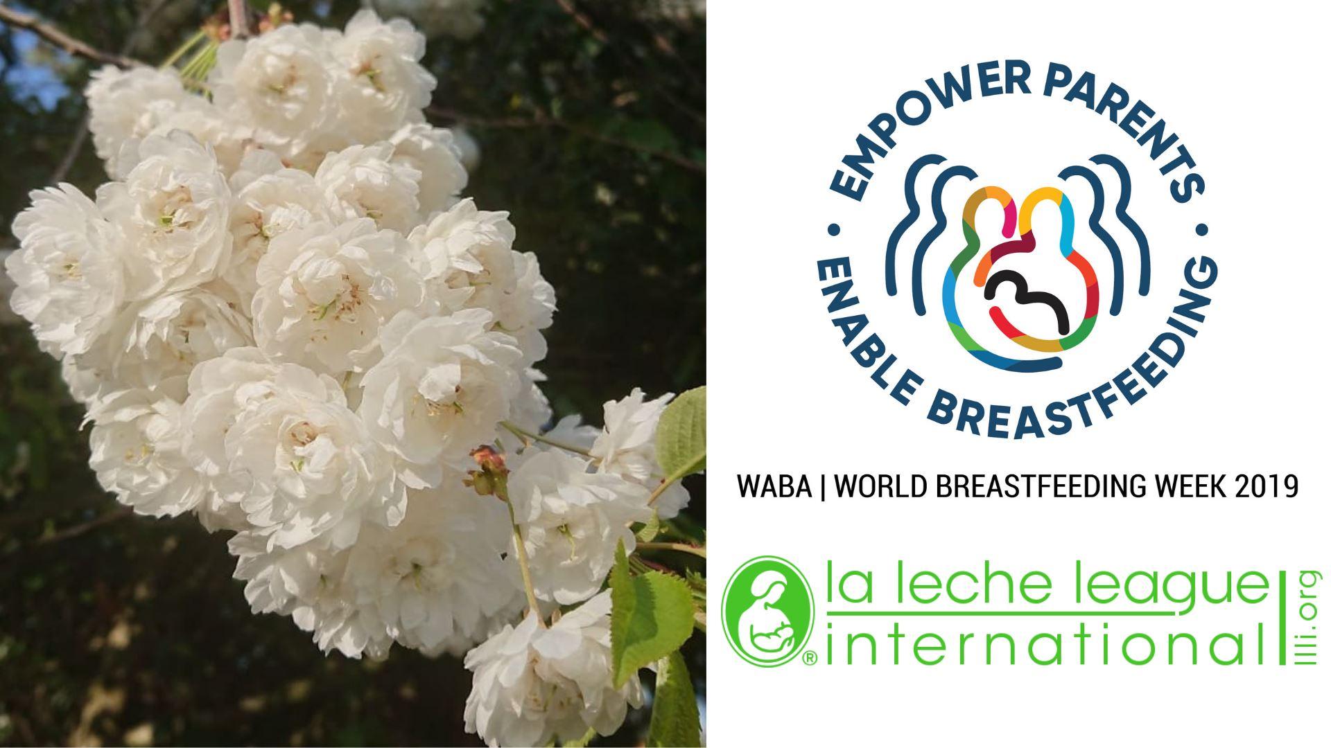 Wbw Resource Set La Leche League International